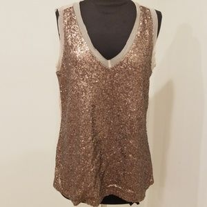 NWT! Cupio Brown Sequined V neck Size L top